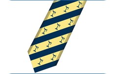 Doon School Tie Blue and Gold